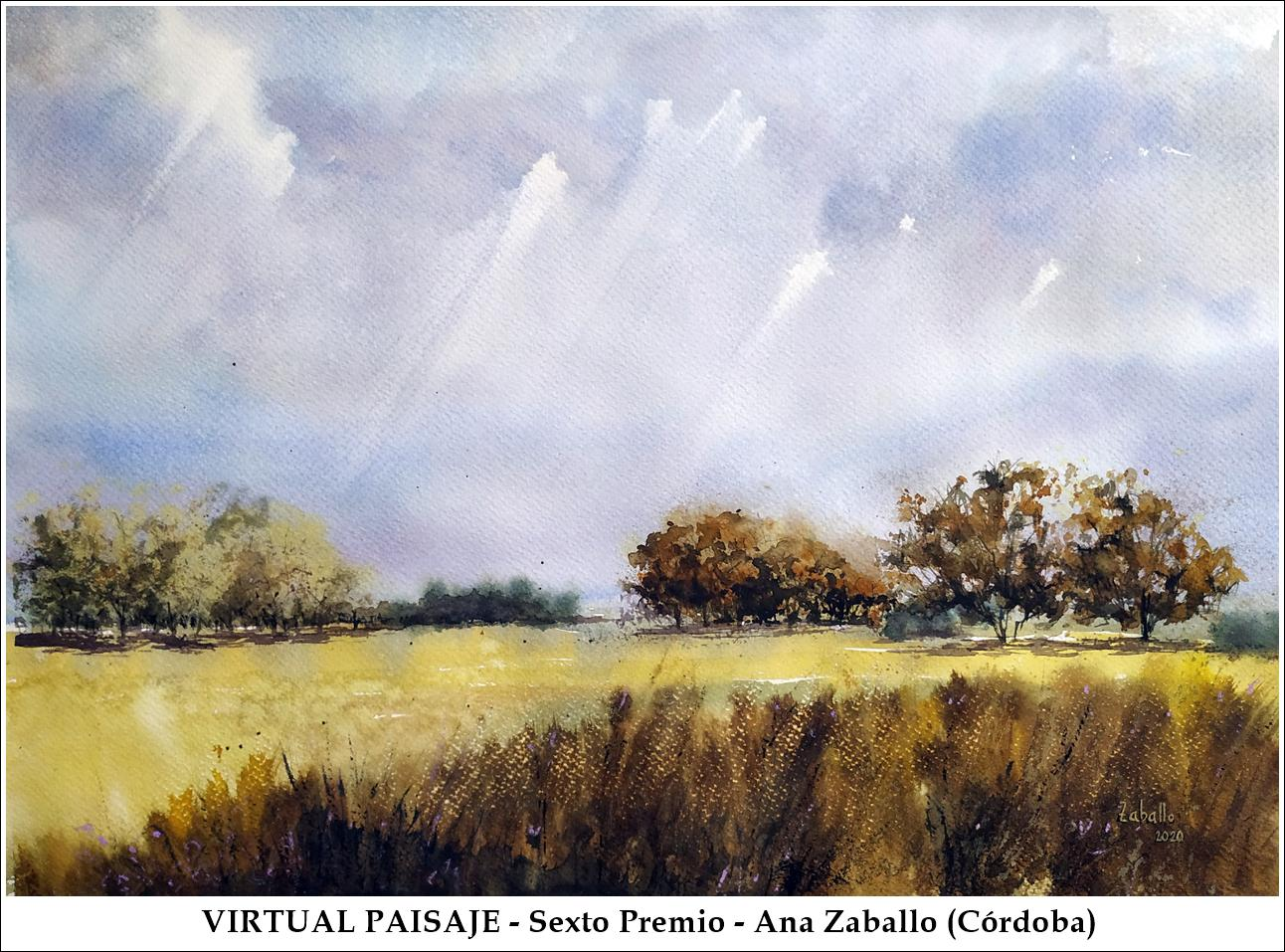 VirtualPaisaje - SextoPremio - AnaZaballo